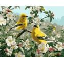 Щеглы весной Раскраска картина по номерам Plaid