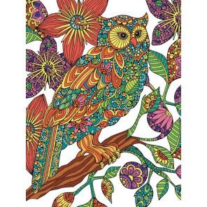 Цветочная сова Раскраска по номерам цветными карандашами Dimensions