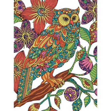 Цветочная сова Раскраска по номерам цветными карандашами ...