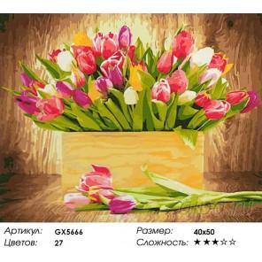 Тюльпаны для любимой Раскраска картина по номерам на холсте