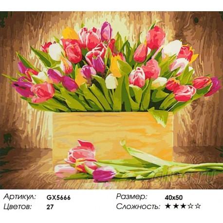 Раскраска по номерам Тюльпаны для любимой картина 40х50 см ...