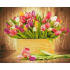 Тюльпаны для любимой Раскраска картина по номерам акриловыми красками на холсте