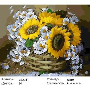 Количество цветов и сложность Ромашки и подсолнухи Раскраска картина по номерам акриловыми красками на холсте