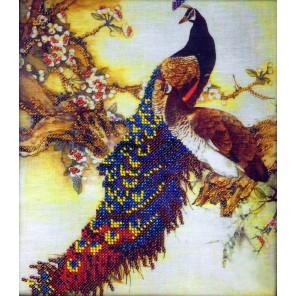 Павлин Набор для частичной вышивки бисером Вышиваем бисером