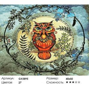 Количество цветов и сложность Облачная сова Раскраска картина по номерам акриловыми красками на холсте