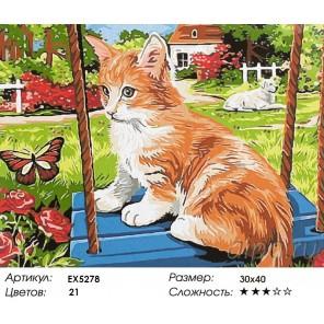 Котёнок на качелях Раскраска картина по номерам акриловыми красками на холсте