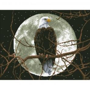 Орёл Алмазная мозаика вышивка Паутинка