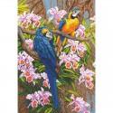 Попугаи Алмазная мозаика вышивка Паутинка