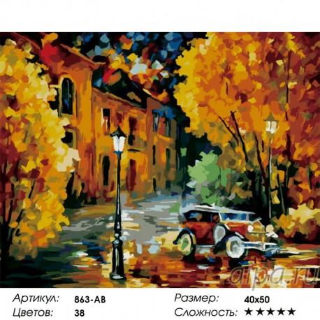 Сложность и количество цветов Город Раскраска картина по номерам акриловыми красками на холсте Белоснежка