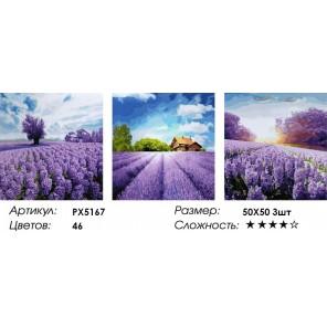 Количество цветов и сложность Триптих Лавандовое настроение Раскраска картина по номерам акриловыми красками на холсте