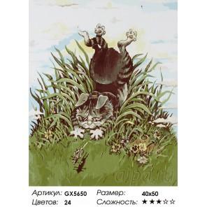 Ловкий кузнечик Раскраска картина по номерам акриловыми красками на холсте