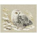 Белая сова Набор для вышивания Риолис