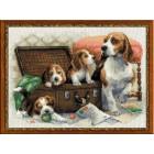 Собачье семейство Набор для вышивания Риолис