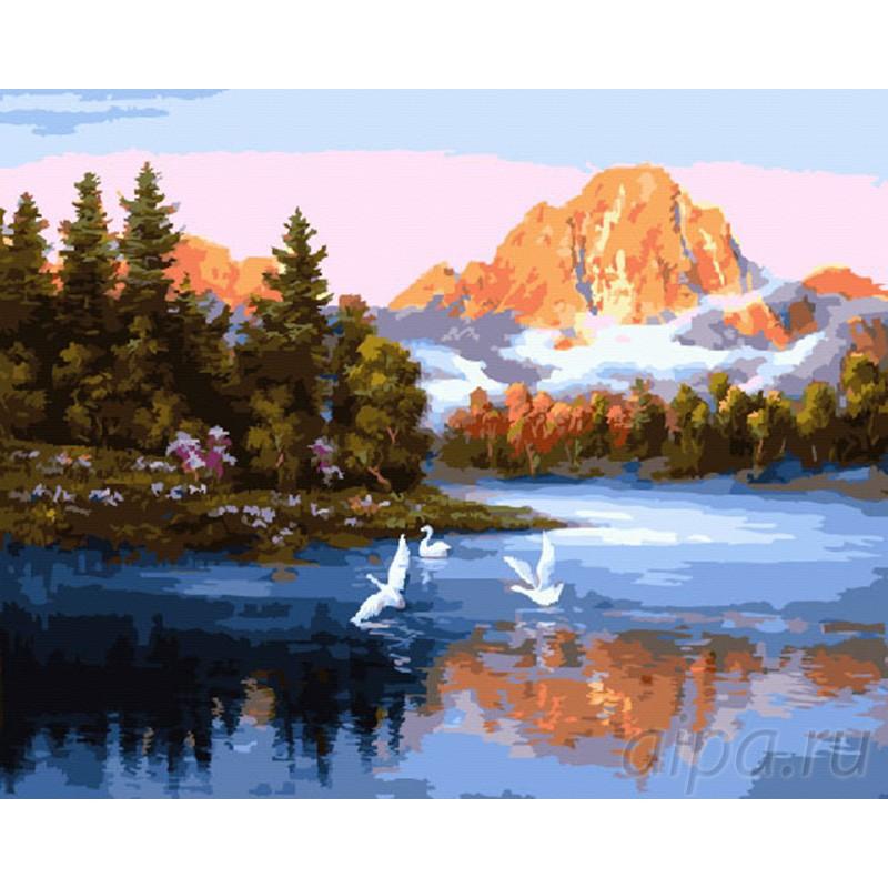 Раскраска по номерам Лебеди на озере картина 40х50 см на ...