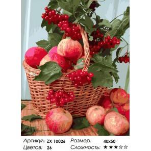 Количество цветов и сложность Калина и яблоки Раскраска картина по номерам акриловыми красками на холсте