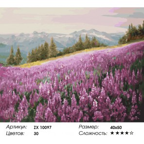 Количество цветов и сложность Поле кипрея Раскраска картина по номерам акриловыми красками на холсте