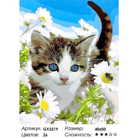Количество цветов и сложность Котёнок в ромашках Раскраска картина по номерам акриловыми красками на холсте
