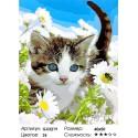 Котёнок в ромашках Раскраска картина по номерам на холсте