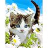 Котёнок в ромашках Раскраска картина по номерам акриловыми красками на холсте