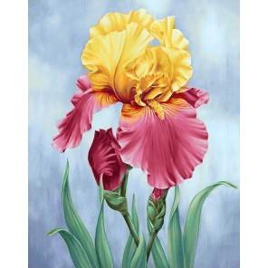 Цветущий ирис Алмазная вышивка мозаика Гранни