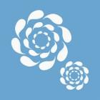 Роза ветров Трафарет 33х33 см Marabu