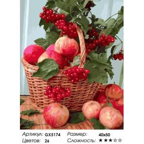 Количество цветов и сложность Калина красная Раскраска картина по номерам акриловыми красками на холсте