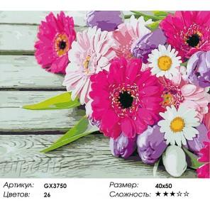 Герберы и тюльпаны Раскраска картина по номерам на холсте