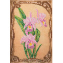 Грациозные орхидеи Набор для вышивки бисером Кроше