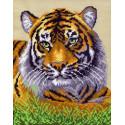 Туранский тигр Канва с рисунком для вышивки Матренин посад