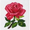 Роза Канва с рисунком для вышивки Матренин посад
