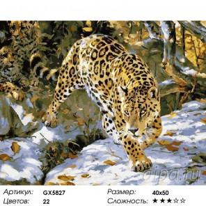 Количество цветов и сложность Леопарды Раскраска картина по номерам акриловыми красками на холст