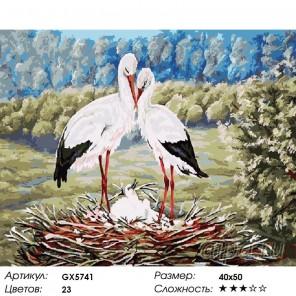 Количество цветов и сложность Пара аистов Раскраска картина по номерам акриловыми красками на холст