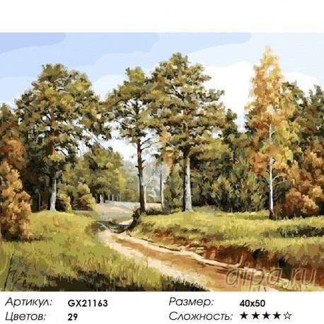 Количество цветов и сложность Дорога в лесу Раскраска картина по номерам акриловыми красками на холст