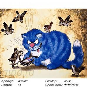 Котик нашел телефон Раскраска картина по номерам на холсте