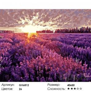 Количество цветов и сложность Поле лаванды Раскраска картина по номерам акриловыми красками на холсте