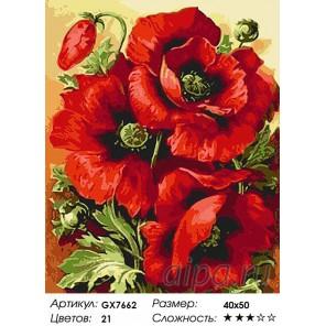 Количество цветов и сложность Три мака Раскраска картина по номерам акриловыми красками на холсте