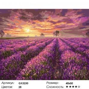 Лавандовый закат Раскраска картина по номерам на холсте
