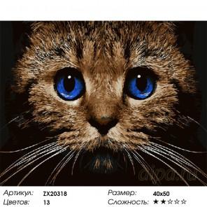 Котёнок Раскраска картина по номерам на холсте
