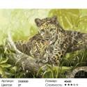 Семья леопардов Раскраска картина по номерам на холсте
