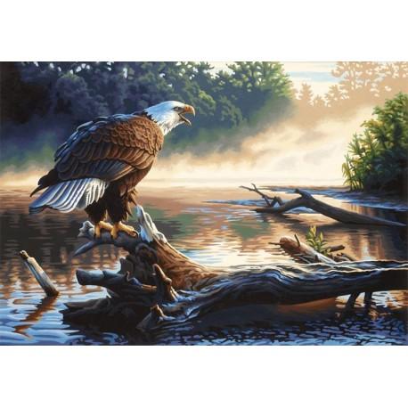Орел-охотник Раскраска картина по номерам акриловыми красками Dimensions