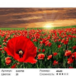 Количество цветов и сложность Поле маков Раскраска картина по номерам акриловыми красками на холсте