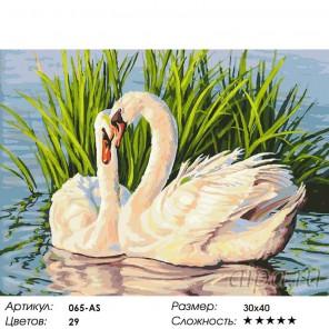 Количество цветов и сложность Навсегда Раскраска ( картина ) по номерам акриловыми красками на холсте Белоснежка