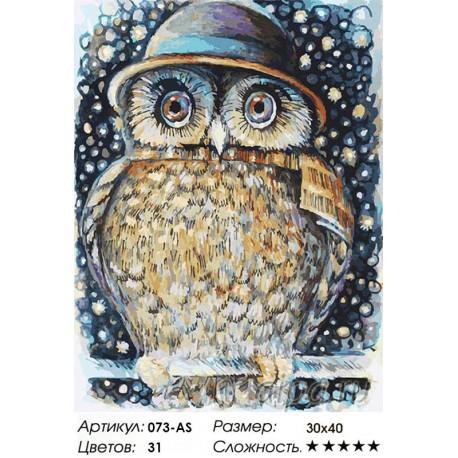 Сова в шляпе Раскраска ( картина ) по номерам на холсте ...