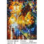 Количество цветов и сложность Огни в ночи Раскраска картина по номерам акриловыми красками на холсте Белоснежка