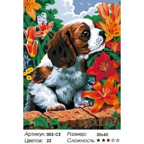 Щенок и лилии Раскраска ( картина ) по номерам на холсте Белоснежка