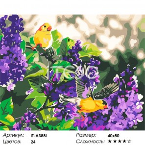 Сиреневый цвет Раскраска по номерам на холсте Iteso