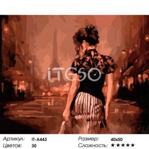 Вечер в Париже Раскраска ( картина ) по номерам на холсте Iteso