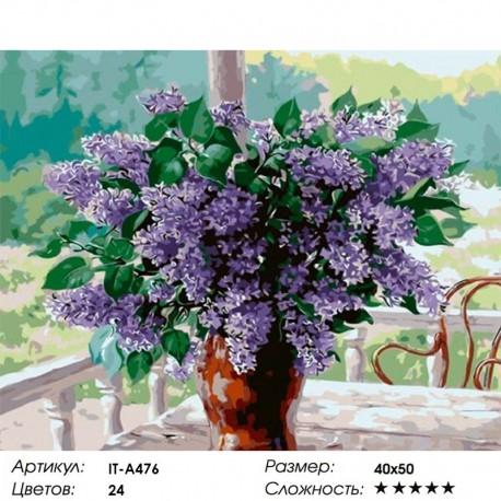 Количество цветов и сложность Сирень на веранде Раскраска ( картина ) по номерам акриловыми красками на холсте Iteso