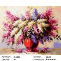 Сирень Раскраска ( картина ) по номерам на холсте Iteso