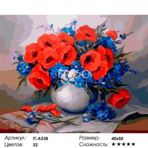 Фелиция с маками Раскраска картина по номерам на холсте Iteso